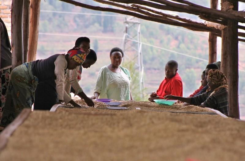 berge von ruanda